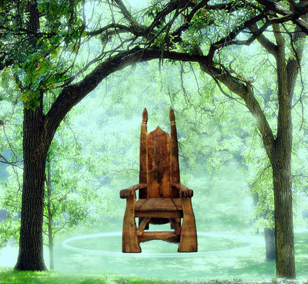 rustic chair in a forest grove under arching tree branches